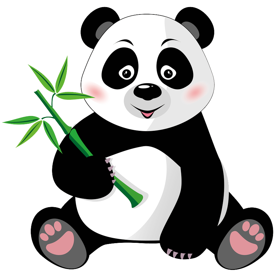 Hungry Panda Eats Spam
